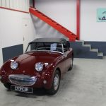 Vehicule Collection Austin Healey Frogeye 8