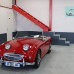 Vehicule Collection Biarritz Cforcar Austin Healey Sprite Bugeye Frog 1